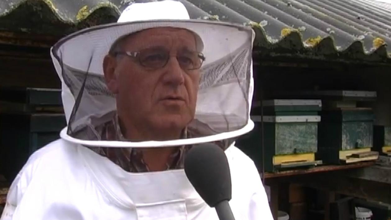 Henk Boot, voorzitter bijengilde Etten-Leur